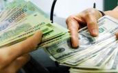 Tỷ giá ngoại tệ giảm tại một số ngân hàng