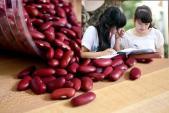 Nên cho con ăn đậu đỏ trong mùa thi