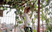 """Người Hà Nội đua nhau làm """"nông dân"""" trồng rau sạch"""