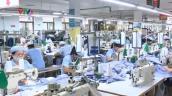 Tháng 7, nhu cầu nhân lực của TP.HCM tăng 17%