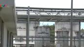 Nhà máy sản xuất Ethanol hoạt động cầm chừng