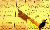 Tuần qua, giá vàng trồi sụt chóng mặt