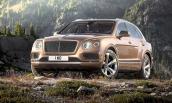 """Siêu SUV Bentley Bentayga """"cháy hàng"""" đến hết năm 2016"""