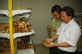 HN: Tiêu hủy hàng trăm kg bánh Trung thu không rõ nguồn gốc