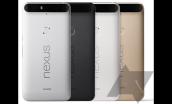 Điện thoại Huawei Nexus tiếp tục lộ ảnh trước thềm ra mắt chính thức