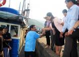 Bốn chuyên gia Nhật cùng ngư dân ra khơi bắt cá ngừ
