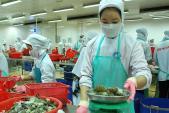"""TPP giúp xuất khẩu Việt Nam """"nhảy vọt"""""""