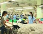Các doanh nghiệp dệt trong nước lay hoay tìm cơ hội từ TPP