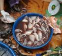 Mẹo cực hay phân biệt cá làm sẵn tươi hay ươn