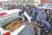 Cảnh chở xác chó lậu bằng siêu xe gây sốc