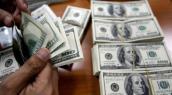 Giá USD hôm nay 3/11: Tiếp tục giảm