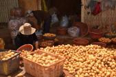 Đà Lạt: Đóng chốt 24/24 chặn khoai tây TQ vào chợ nông sản
