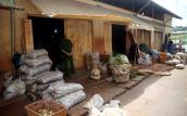Lập chốt trực 24/24 ngăn khoai tây ngoại nhập vào chợ nông sản Đà Lạt
