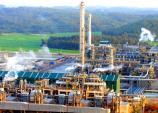 Giá dầu giảm mạnh: Doanh nghiệp trong nước lo
