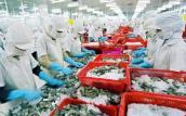 Vì sao xuất khẩu nông lâm thủy sản giảm mạnh?