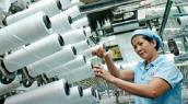 Việt Nam gia nhập AEC: Cửa lớn đã mở, thách thức đã đến