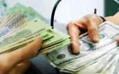 Phó Thống đốc NHNN: Tỷ giá sẽ được điều hành theo hướng linh hoạt hơn