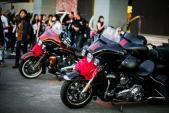 Lễ rước dâu độc đáo của dàn xe Harley-Davidson