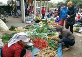 Chợ quê ngày cuối năm: Giá rau xanh tăng chóng mặt, 20.000 đồng một củ su hào bằng nắm tay
