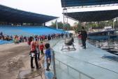 Trẻ em mê mẩn với xiếc cá heo tại Thiên đường Bảo Sơn