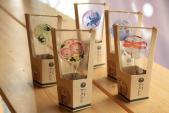 10 món ngọt cực dễ thương không nên bỏ lỡ khi đến Nhật