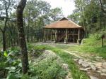 Lí giải vì sao 53 hecta Vườn quốc gia Ba Vì có giá 8 tỉ đồng