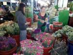 Hoa tươi ngày 8/3 giá tăng khoảng 30%