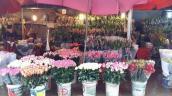 Thị trường hoa ngày 8/3 tăng giá mạnh, sức mua kém