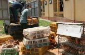 Cho nhập khẩu gà Trung Quốc: Người tiêu dùng sẽ an toàn hơn?