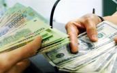 Tỷ giá trung tâm giảm sâu, giá USD tại ngân hàng đứng im