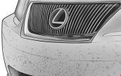 Mẹo loại bỏ côn trùng bám trên ô tô