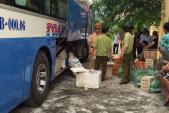 Bắt xe khách chở nửa tấn cá biển ướp lạnh về SG tiêu thụ