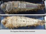 Phát hiện mới về xác ướp Ai Cập 2.300 tuổi