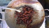 Lưỡi vịt khìa nước dừa: giòn giòn, ngọt ngọt