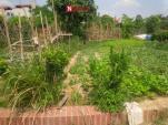 Khu lưu niệm gần 500 tỷ đồng biến thành nơi trồng rau, đổ phế liệu