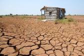 WB cấp 310 triệu USD để chống hạn mặn ở Đồng bằng sông Cửu Long