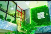 Quán cà phê có không gian xanh mát ở trung tâm Hà Nội