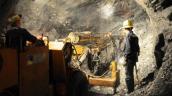 Kiểm tra thông tin công ty khai thác vàng nợ 500 tỉ đồng tiền thuế