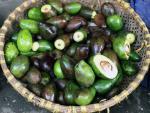 Hoa quả thối ở các chợ