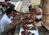 Truy tìm nguồn gốc cua biển siêu rẻ bán tràn lan ở Hà Nội