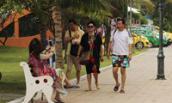"""Quảng Nam: Đón khách lưu trú """"chui"""" đang diễn biến phức tạp"""