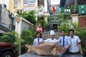 Cận cảnh cá hô