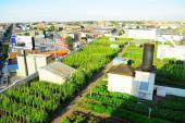 Ngắm nông trại hữu cơ lớn nhất thế giới trên sân thượng