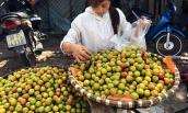 Những loại hoa quả Trung Quốc giả hàng