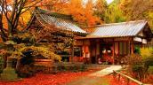 Những địa điểm ngắm mùa thu tuyệt vời nhất Châu Á