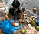 Hà Nội: Nghi dừa xiêm 'tắm' hóa chất giữa phố