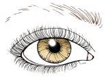 Cách trang điểm khắc phục nhược điểm lông mày ngắn, thưa thớt và bạc màu