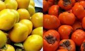 Cảnh báo hồng Trung Quốc có chất bảo quản bán tràn lan trên thị trường