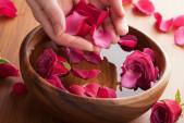 5 loài hoa quen thuộc giúp chống lão hóa và làm đẹp da