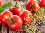 Tự chế mặt nạ cà chua dưỡng ẩm, kiềm dầu tại nhà